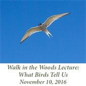 Walk in the Woods Nature Lecture