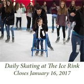 The Ice Rink Open Daily for Skating