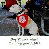 Dog Walker Watch (June 3, 2017)