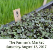 The Woodlands Farmer's Market at Grogan's Mill (August 12, 2017)