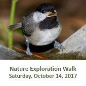 Nature Exploration Walk