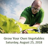Grow Your Own Vegetables Workshop