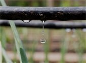 Drip Irrigation and Rainwater Harvesting Class