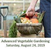Advanced Vegetable Gardening