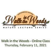Walk in the Woods - Online Class