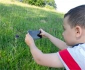 The Woodlands Township Virtual BioBlitz