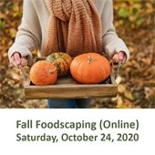 Fall Foodscaping