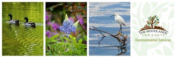 Environmental Services Department Blog