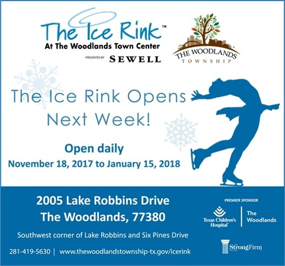 The Ice Rink