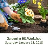 Gardening 101: Can You Dig It?