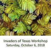 Invaders of Texas Workshop