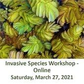 Invasive Species Workshop - Online