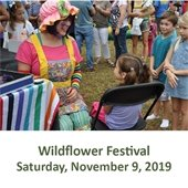 The Woodlands Wildflower Festival