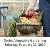 Spring Organic Vegetable Gardening