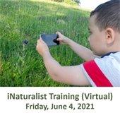 iNaturalist Training