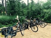 Bike The Woodlands Month Events Cancelled