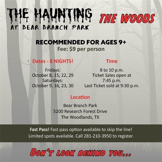 The Haunting at Bear Branch