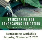 Rainscaping Workshop