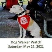 Dog Walker Watch