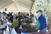 Arbor Day in The Woodlands