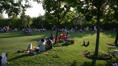 Picnic at Concert in the Park