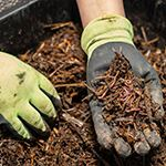 Composting Class