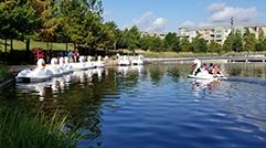 Swan Boats 241 x 134 - Launch
