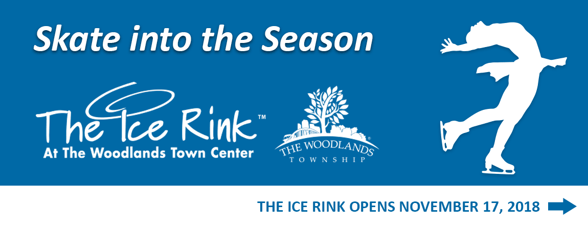 The Ice Rink 2018 Banner