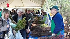 Arbor Day-0061_PF_for web