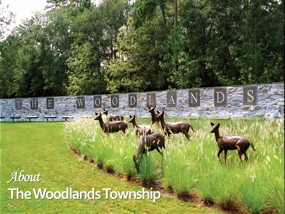 Welcome The Woodlands Deer Statues