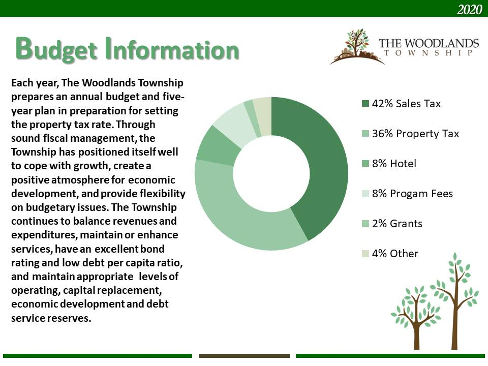 The Woodlands Budget Information