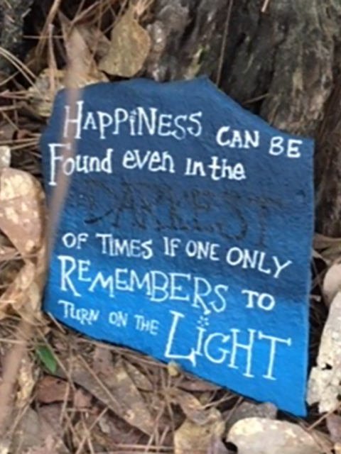 The Woodlands Signs of Hope Woodlands Strong Painted Rocks Happiness Can Be Found OneWoodlands Towns