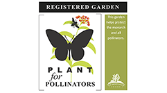 Plant for Pollinators Logo for Village Challenge - thumbnail