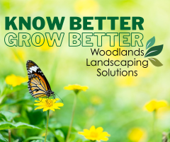 Know Better. Grow Better for web