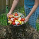 Fall for Composting
