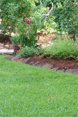 lawn crop_thumb