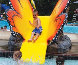 butterfly pool